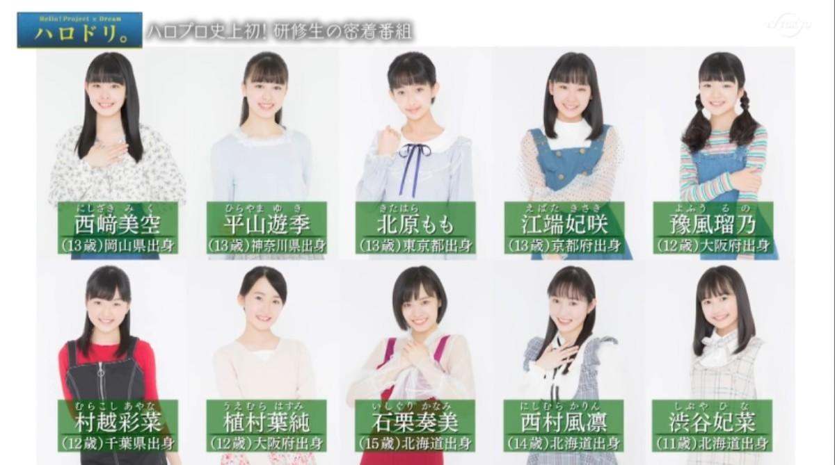 f:id:me-me-koyagi:20200415124400j:plain