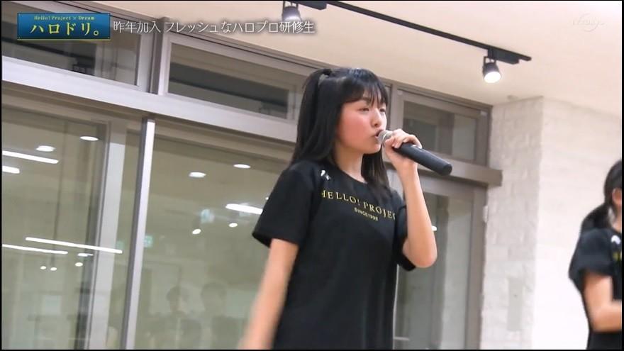 f:id:me-me-koyagi:20200508155522j:plain