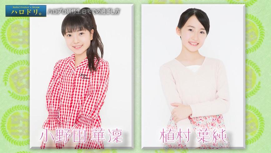 f:id:me-me-koyagi:20200519161844p:plain