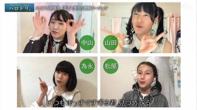 f:id:me-me-koyagi:20200527183120j:plain