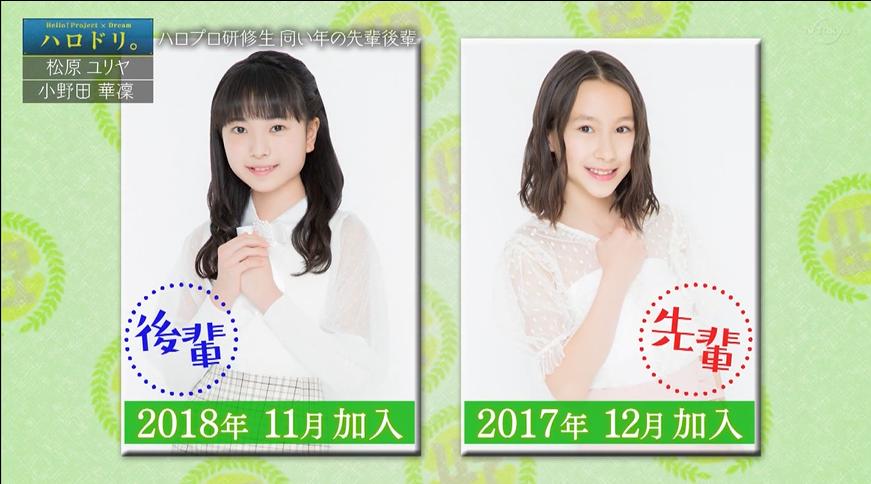 f:id:me-me-koyagi:20200624200100p:plain