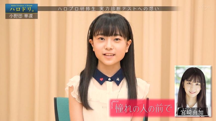 f:id:me-me-koyagi:20200723201952p:plain