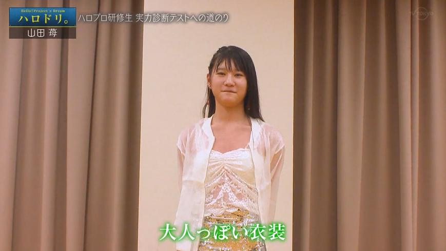 f:id:me-me-koyagi:20200915170616p:plain