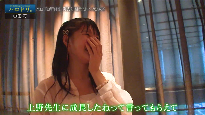 f:id:me-me-koyagi:20200915185556p:plain