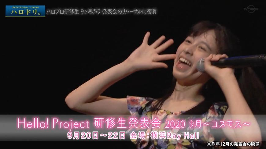 f:id:me-me-koyagi:20200925234451p:plain