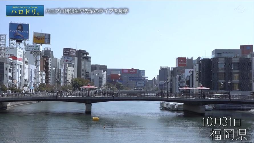 f:id:me-me-koyagi:20201121202636p:plain