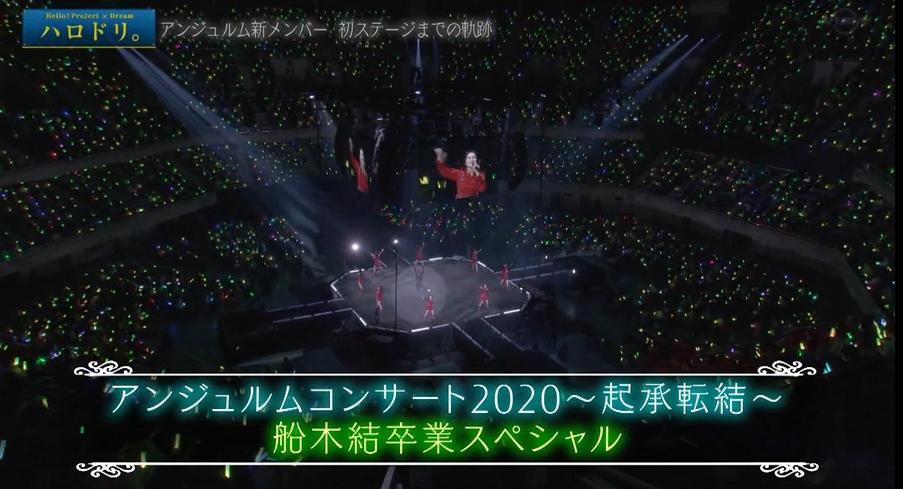 f:id:me-me-koyagi:20201225232518p:plain