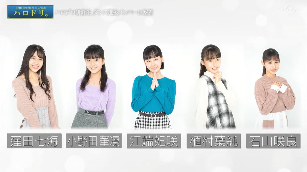 f:id:me-me-koyagi:20210120233624p:plain
