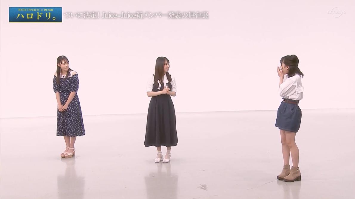 f:id:me-me-koyagi:20210722221308p:plain