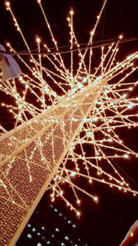 f:id:mecarauroco:20121220193920j:image:w240