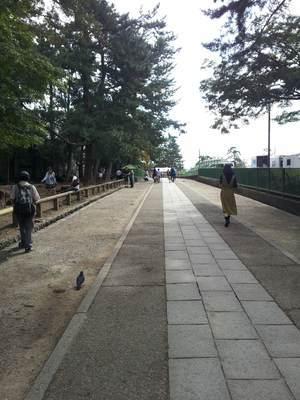 興福寺への入り口