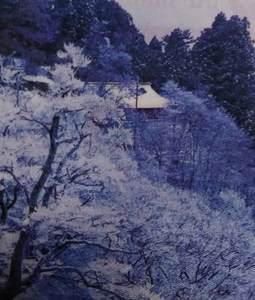 野瀬川村の樹氷