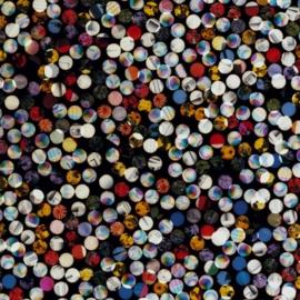 f:id:meddle:20100127170028j:image