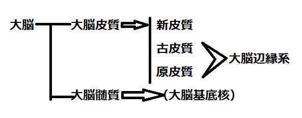 f:id:medudent:20180121185245p:plain