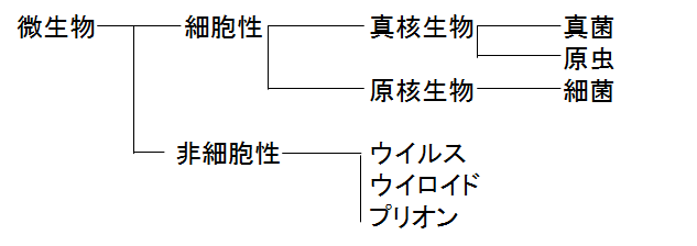 f:id:medudent:20180503194704p:plain
