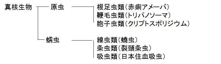 f:id:medudent:20180503204056p:plain
