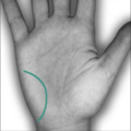 http://www.netplaces.com/palmistry/secondary-lines-and-patterns/the-adornments-of-the-hand.htm