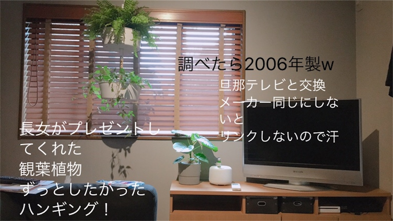 f:id:meg78:20200726172750j:image