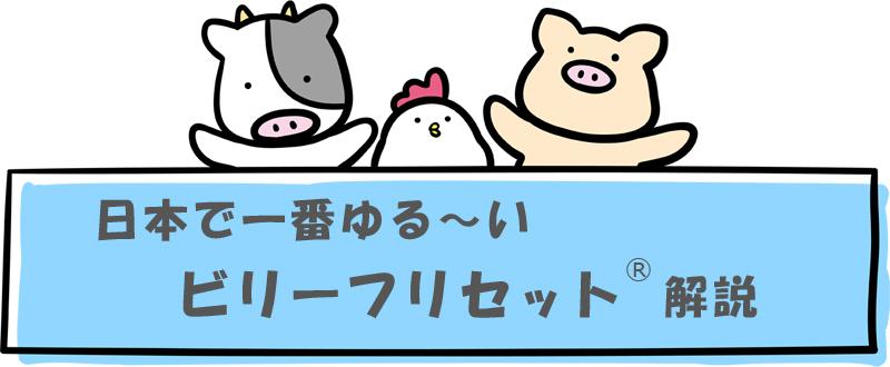 日本で一番ゆるーい「ビリーフリセット」解説のまとめ