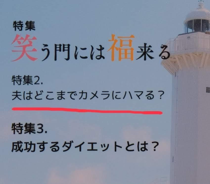 f:id:meganeya-moai:20190204175807j:plain