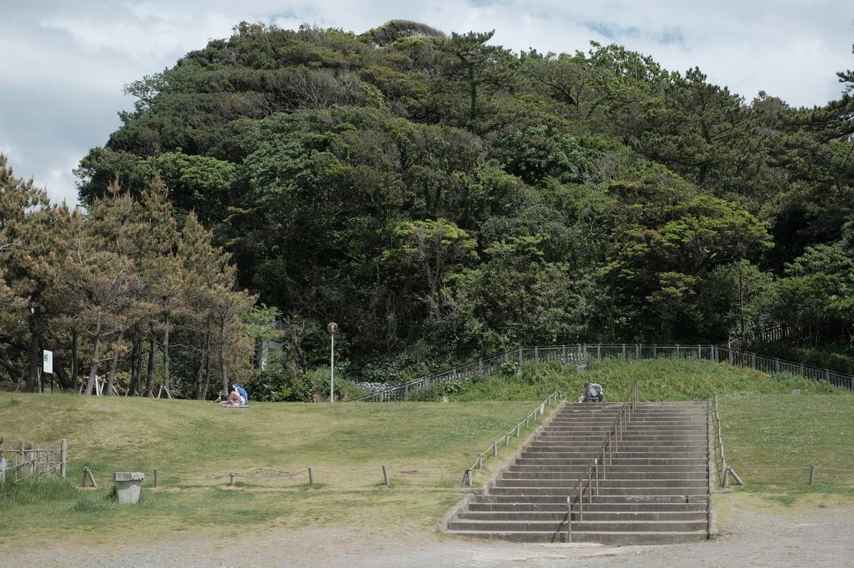 f:id:meganeya-moai:20190507131221j:plain