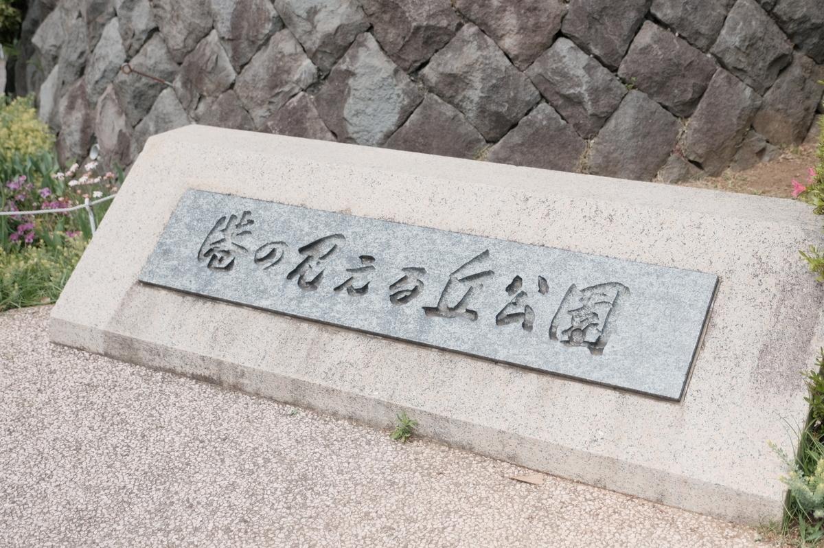 f:id:meganeya-moai:20190513130204j:plain
