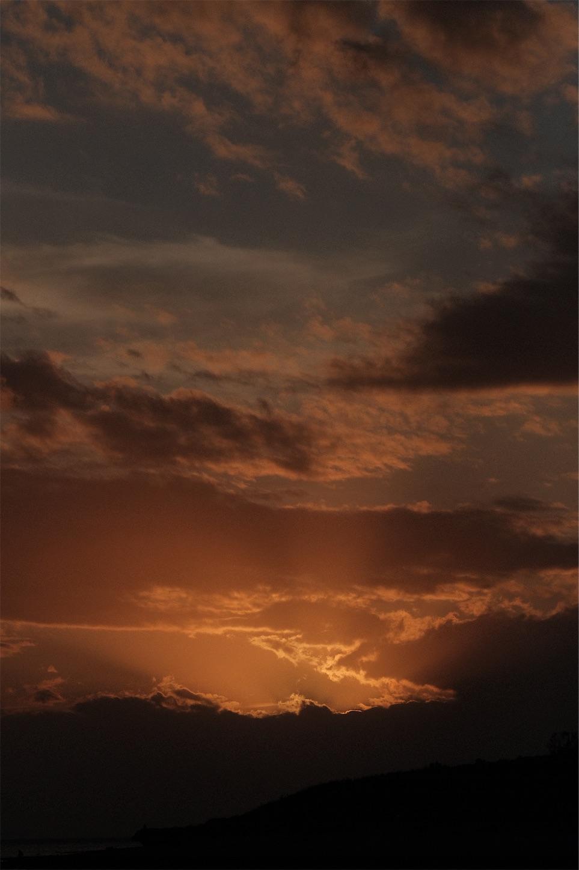 f:id:meganeya-moai:20191115150629j:image