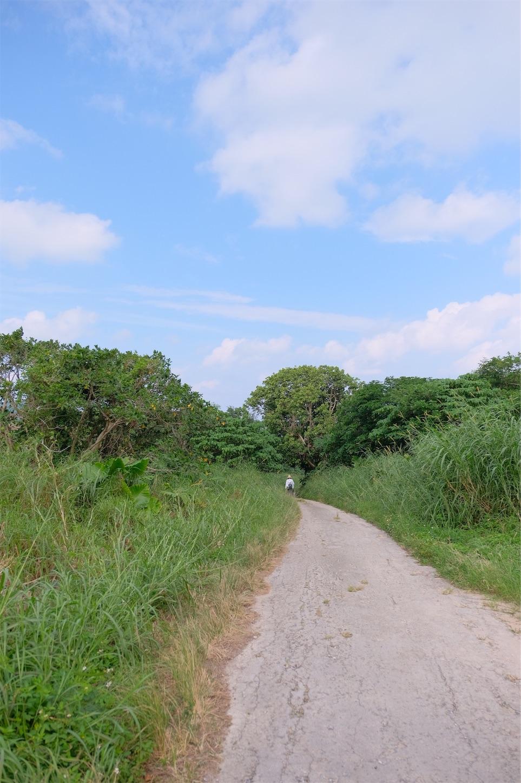 f:id:meganeya-moai:20191119191410j:image