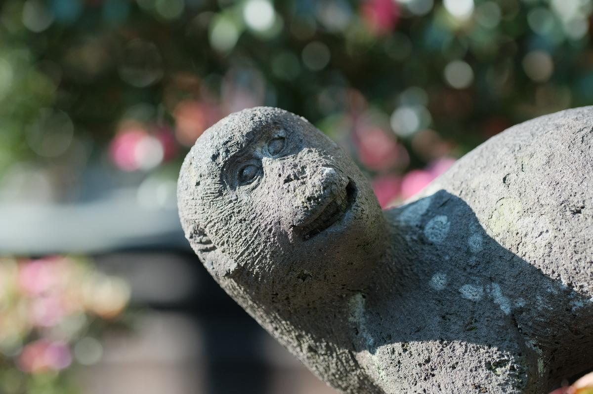 f:id:meganeya-moai:20191212130802j:plain