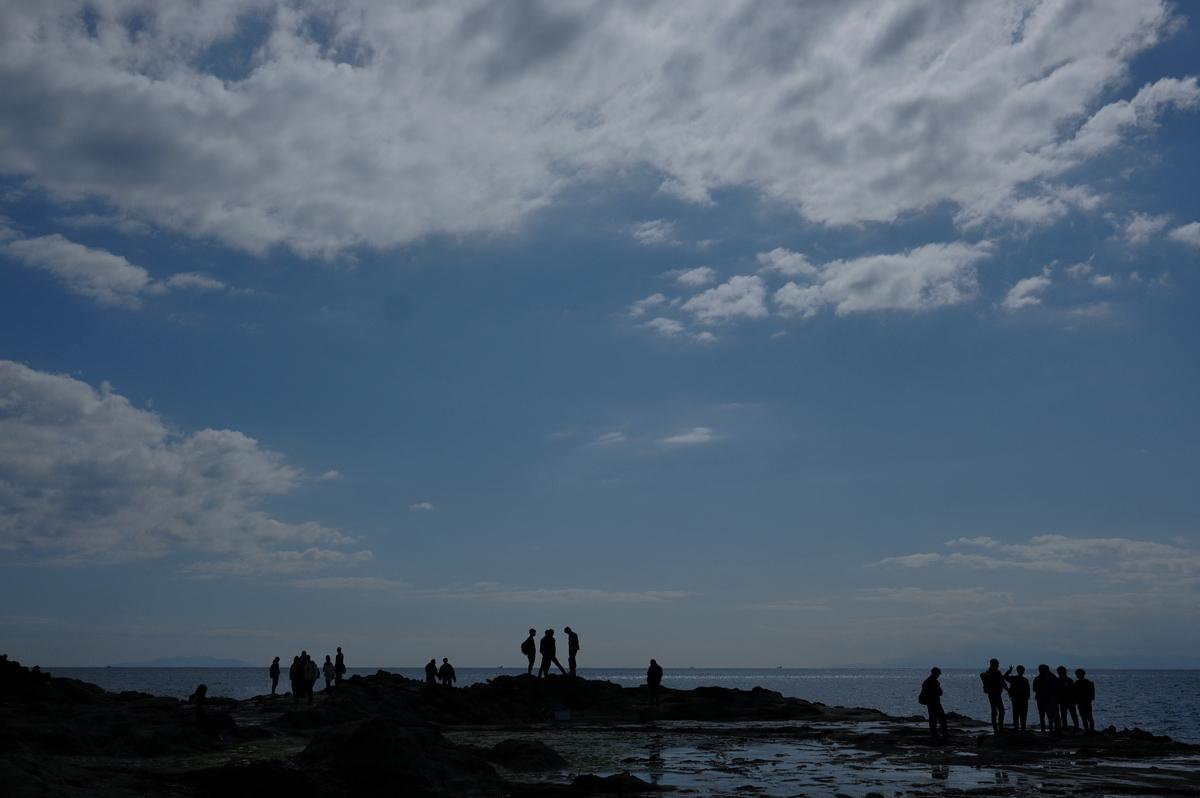 f:id:meganeya-moai:20200312191827j:plain