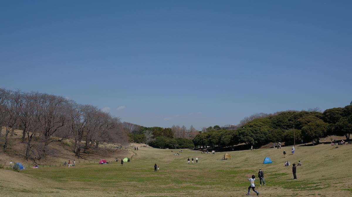 f:id:meganeya-moai:20200318143724j:plain