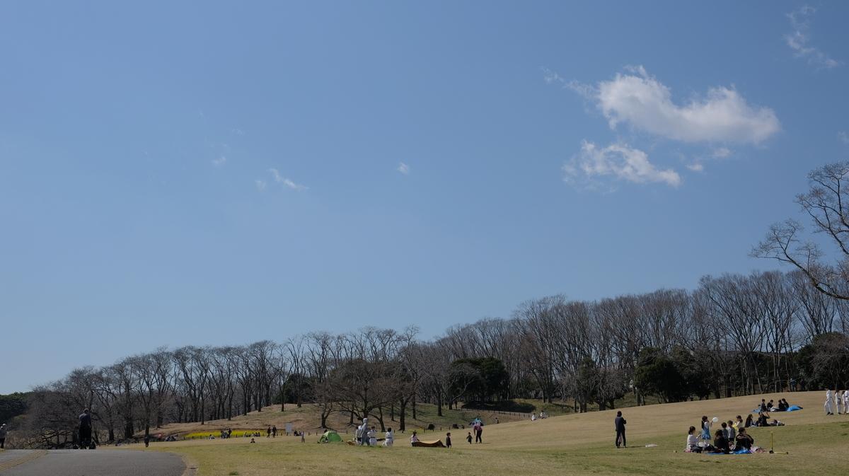 f:id:meganeya-moai:20200318143956j:plain