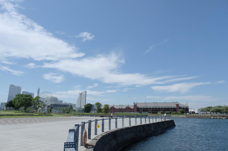 f:id:meganeya-moai:20200702140853j:plain