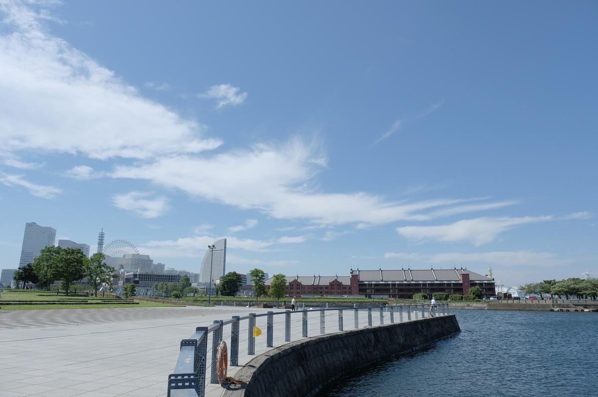 f:id:meganeya-moai:20200702140854j:plain