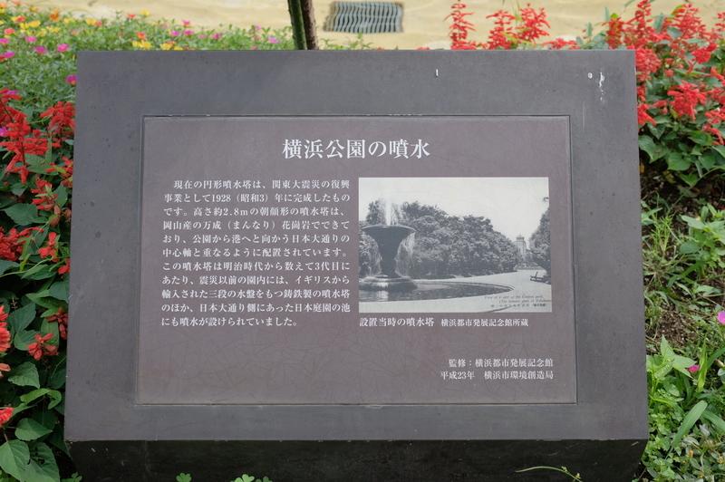 f:id:meganeya-moai:20200720081944j:plain