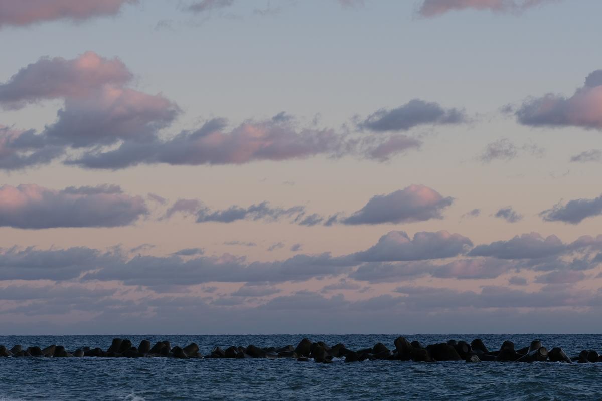 f:id:meganeya-moai:20210101163618j:plain