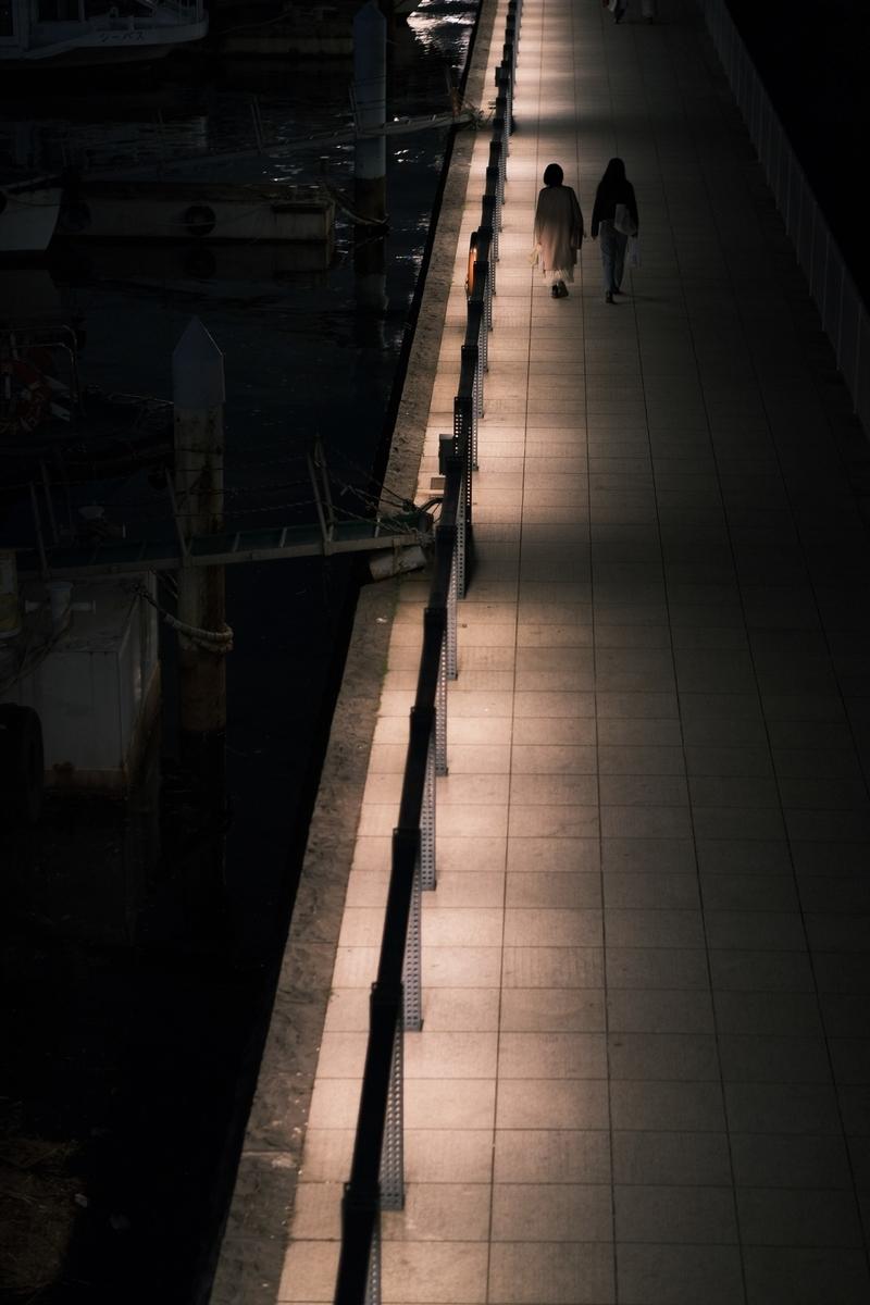 f:id:meganeya-moai:20210318183203j:plain