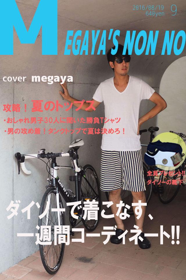 f:id:megaya0403:20161231142153j:plain