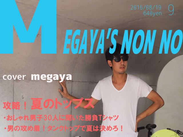 f:id:megaya0403:20170621020247j:plain