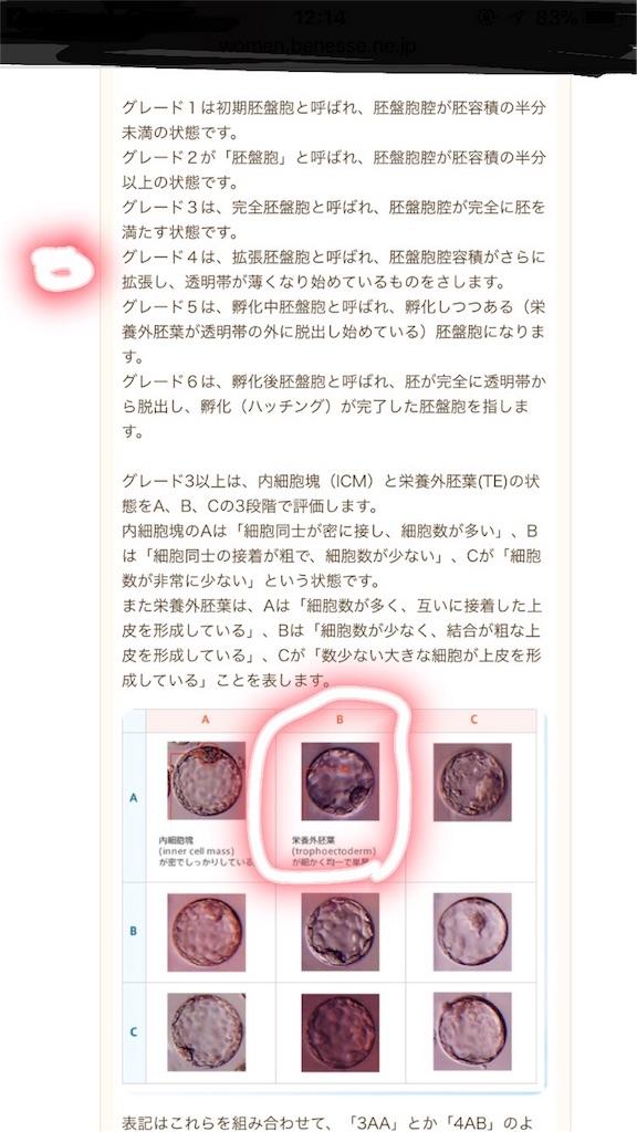 胚盤胞移植日 出産予定日
