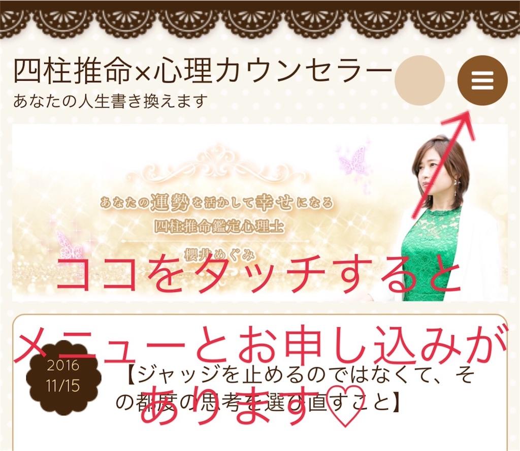 f:id:megumi-sakurai:20161116211202j:image