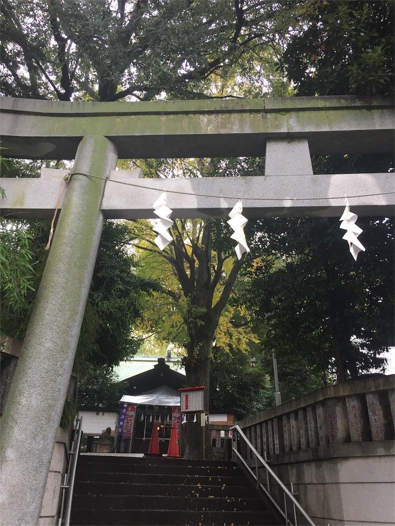 f:id:megumi-sakurai:20161120211120j:image