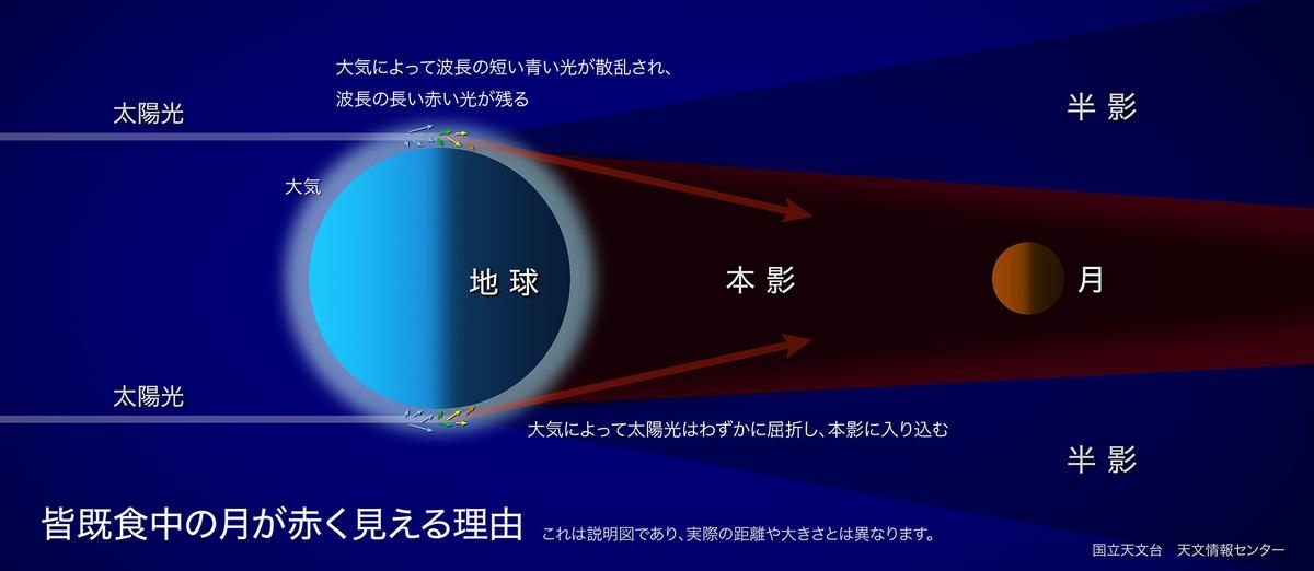 f:id:megumin1120:20210525220056j:plain