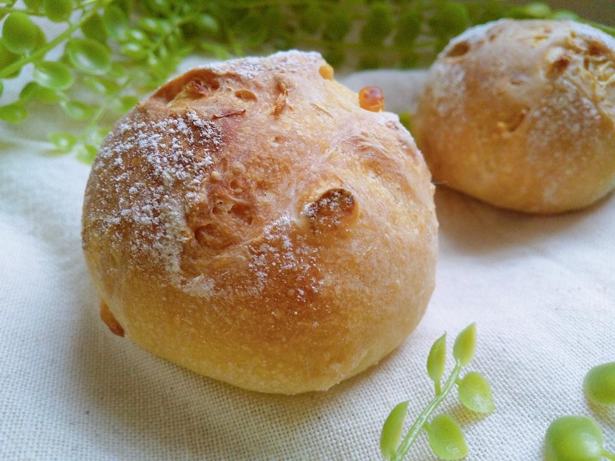 自家製酵母 酵母 玄米 DONQ コーンパン ハード ごはん マクロビ 自然 パン パン作り 健康 黒糖