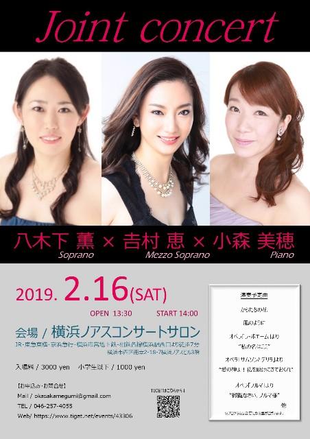 f:id:megyoshimura-mezzosoprano:20190105001733j:image