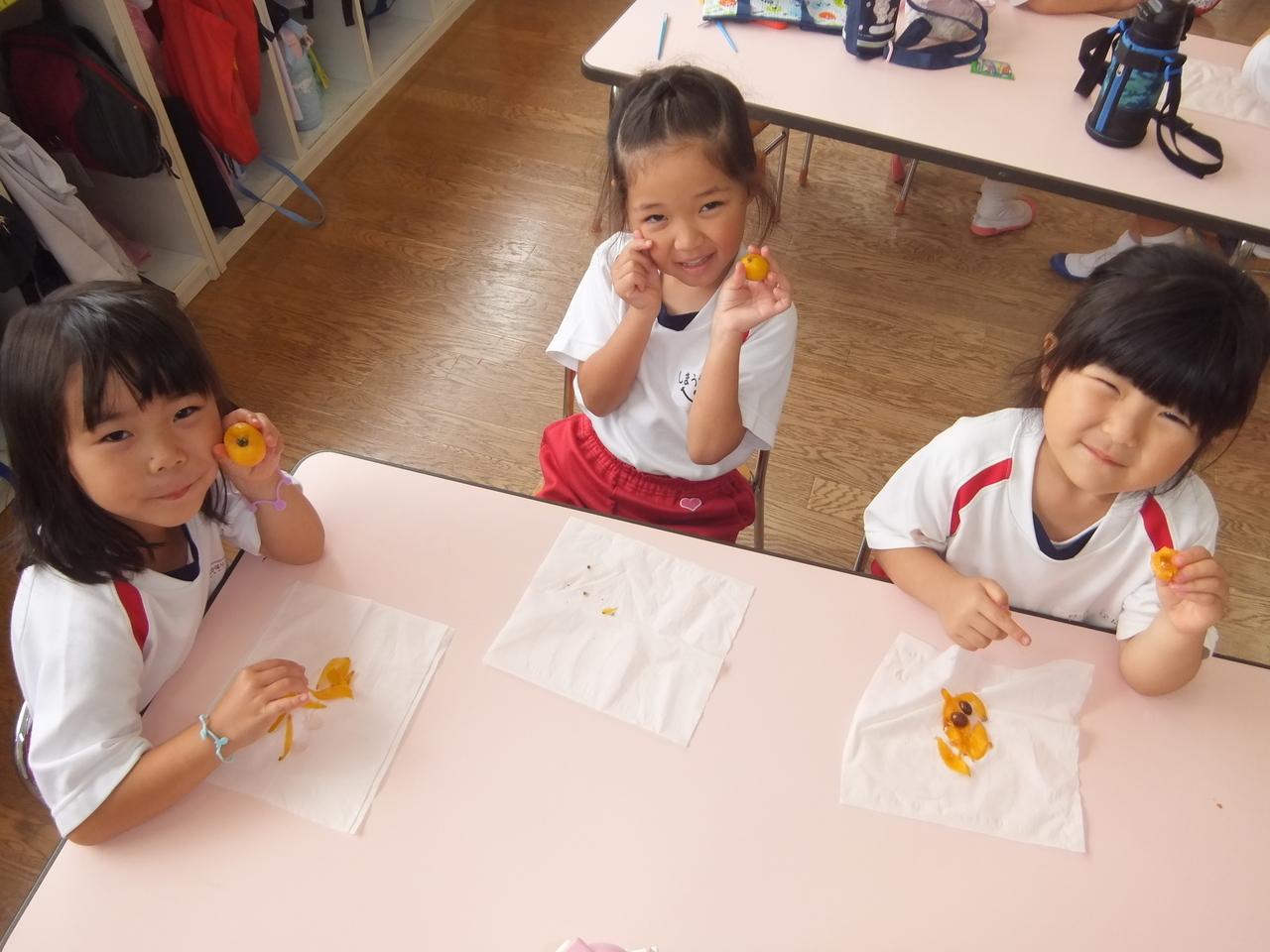 f:id:meiji-k-teacher:20210528141620j:plain