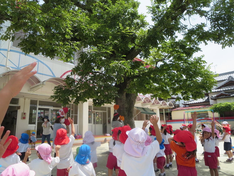 f:id:meiji-kindergarten:20200602101853j:plain