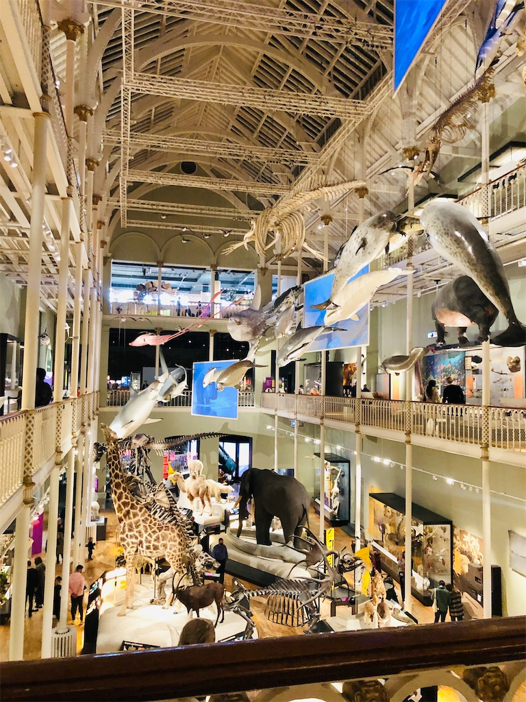 スコットランド博物館