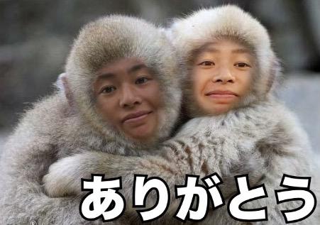 f:id:meimitomochika:20170111070154j:plain