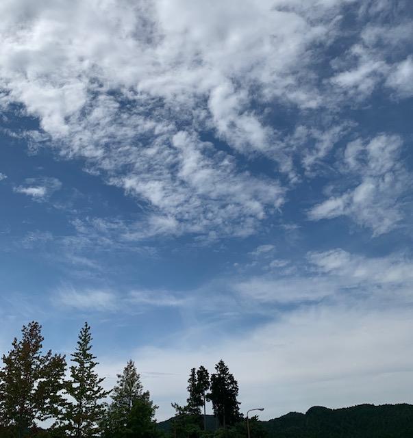 f:id:meisei-m:20200920131814j:plain